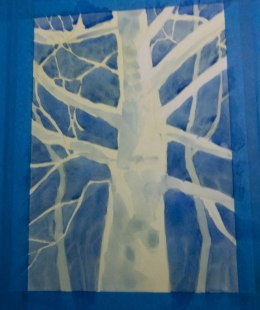 Moonlit Sycamore (2 of 4)