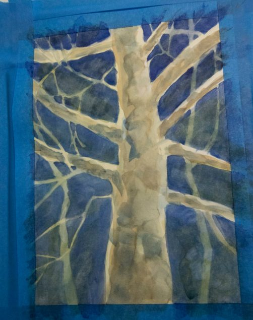 Moonlit Sycamore (3 of 4)