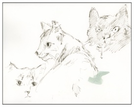 Sketches (5 of 5)