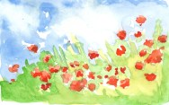 Poppies on dried washes