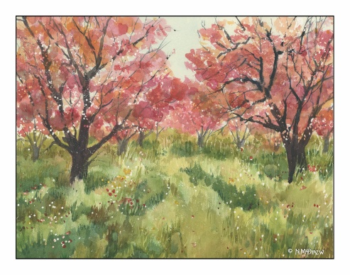 The Orchard (5 of 5)